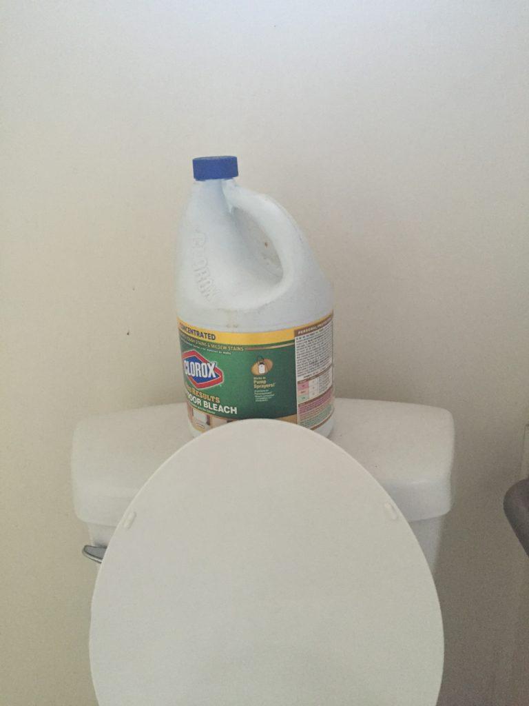 Bleach on Toilet