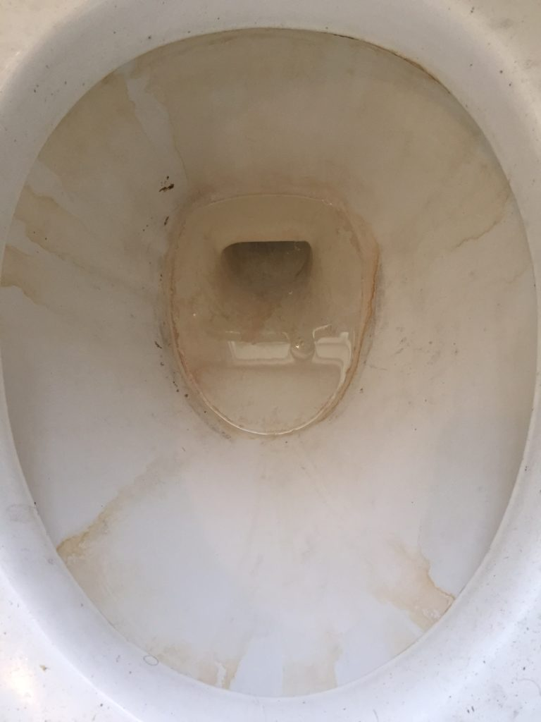 Neglected Toilet