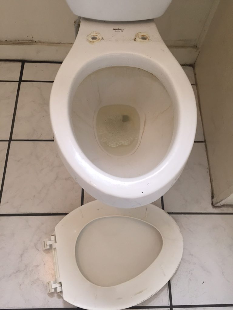 Toilet Seat Removed