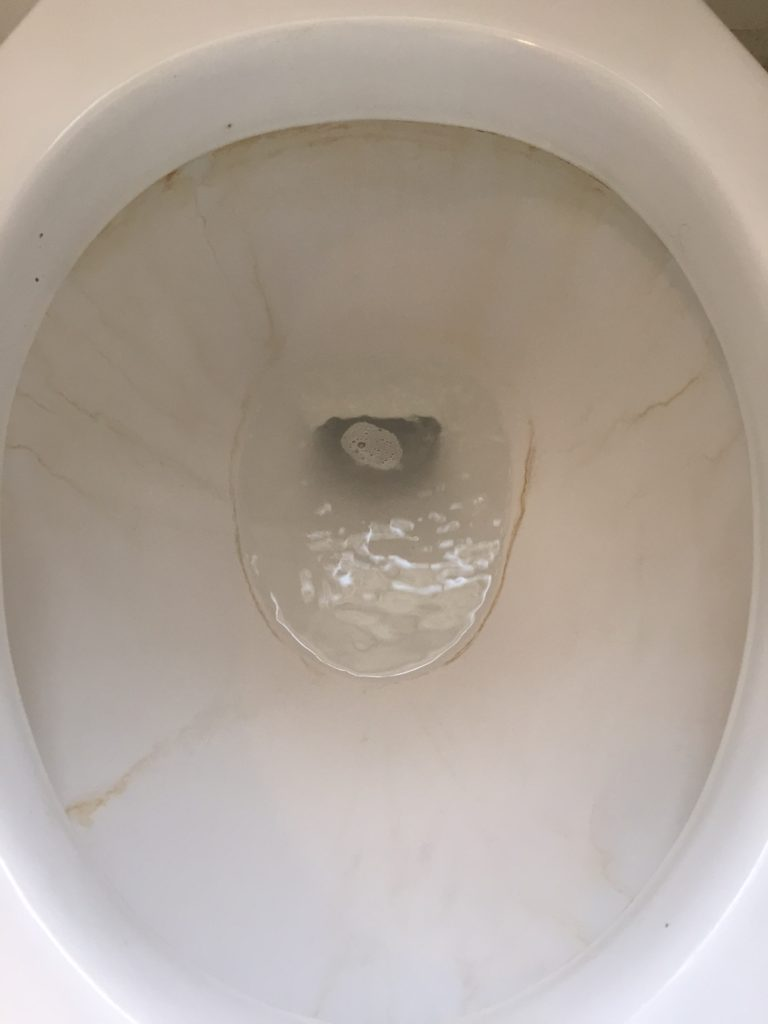 Toilet After Bleach