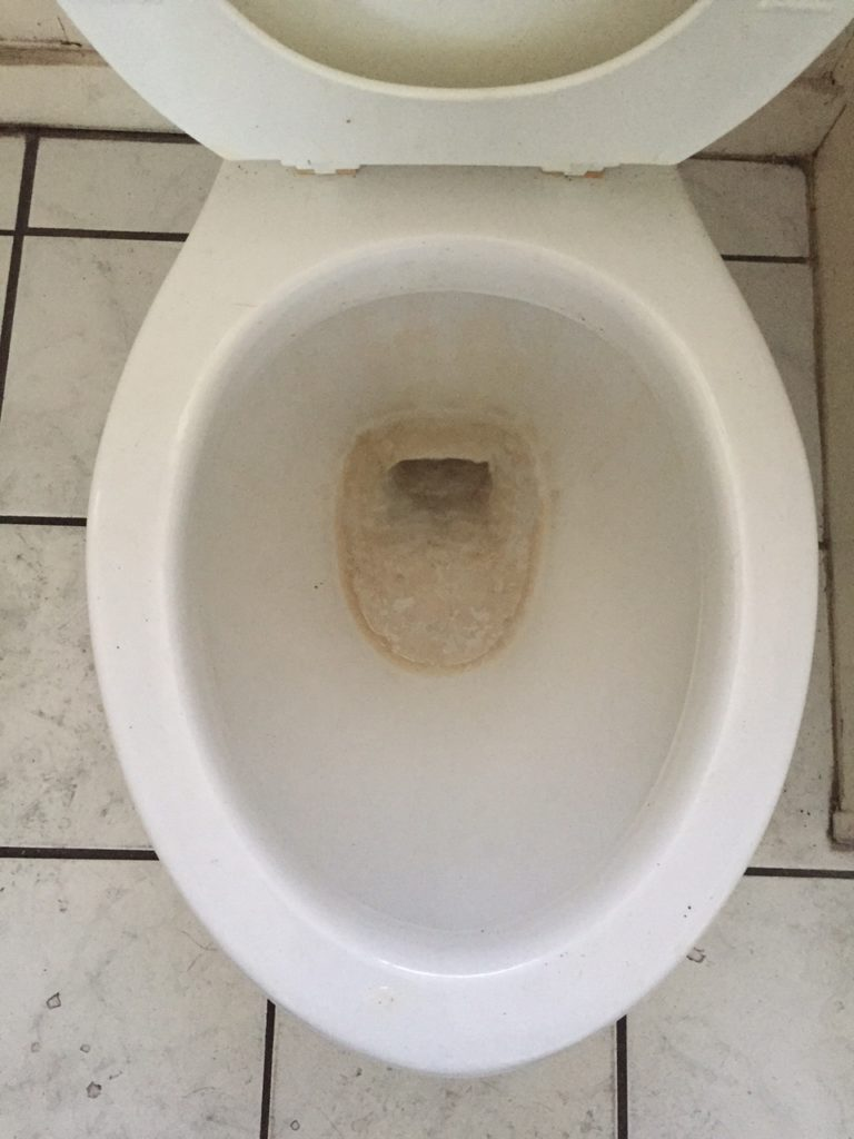 3 Weeks Later Toilet